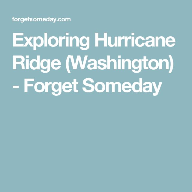 Exploring Hurricane Ridge (Washington) - Forget Someday