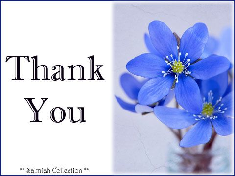 Salmiah Collection: Thank You Card 31