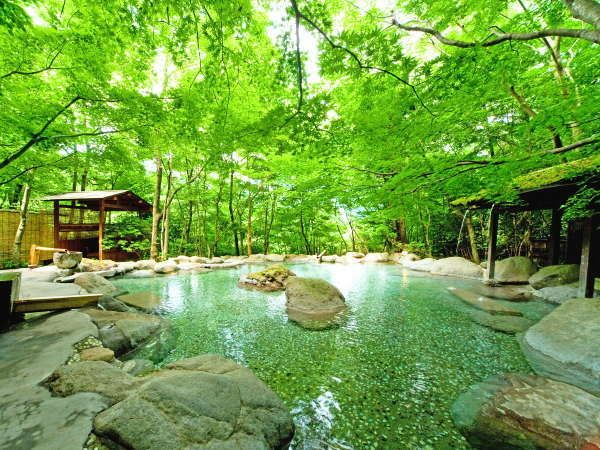 All rooms are secluded accommodations located in a garden. With eight types of private-use hot spring baths. With huge chartered open-air bath surrounded by green. 130 min by JR Limited Express from Hakata Sta.(Fukuoka), or 100 min by highway express bus from Fukuoka Airport.