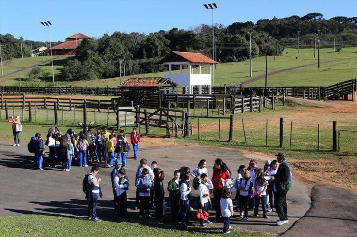 Parque dos Tropeiros. Maratona Infantil e Juvenil da Sustentabilidade - Álbum - Prefeitura de Curitiba. Foto:Cesar Brustolin/SMCS