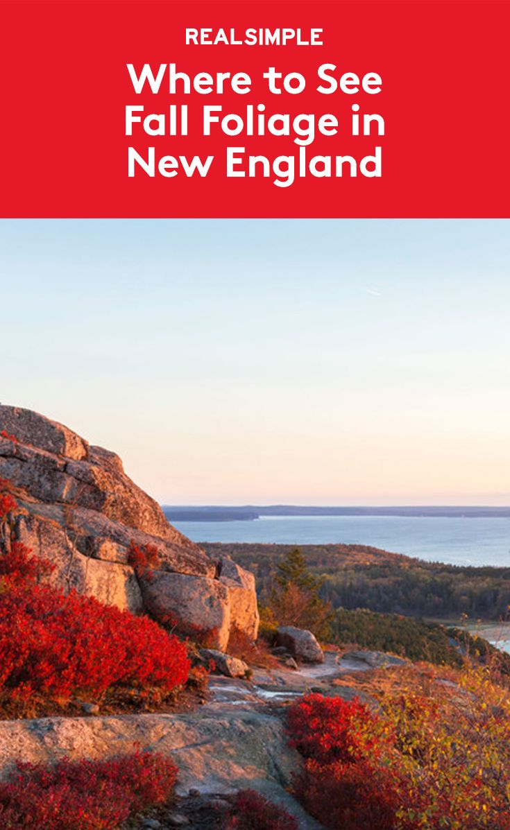 Best 25+ New england states ideas on Pinterest | New england ...