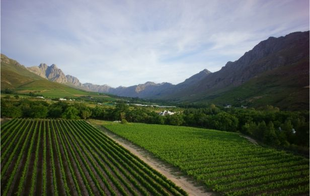 Lanzerac's rooms, restaurants, bars, lounges and spa facilities are amidst dramatic mountain ranges, endless rows of lush vineyards and hectares of award-winning landscaped gardens. This Hotel offers unprecedented world-class hospitality and outstanding service. www.lanzerac.co.za