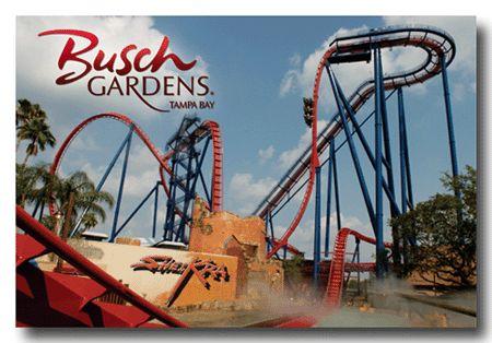 Busch Gardens, Orlando, Florida