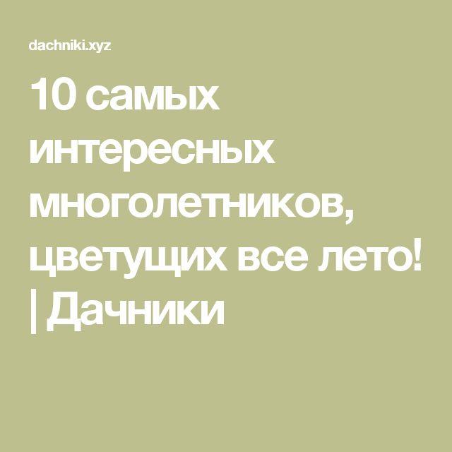 10 самых интересных многолетников, цветущих все лето! | Дачники