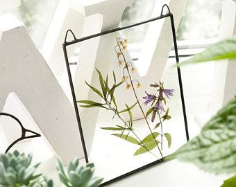Scandinavian decor real floral stained glass panel botanical spring home decor herbarium pressed flowers decor
