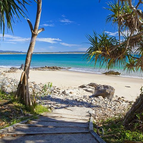 Step on down to your own private beach in the Noosa National Park - aka absolute paradise! This pristine National Park is where you'll find a string of sparkling beaches just like this one, providing plenty of choice for your next swimming spot!