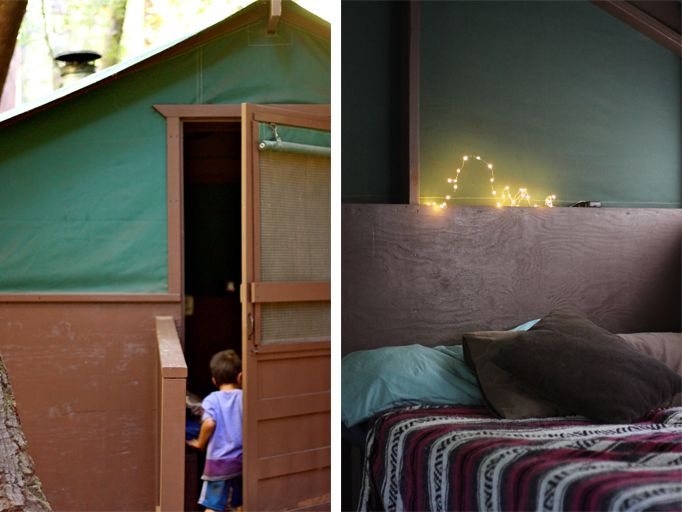 Cocoon Home | Scenes From Big Basin State Park | //cocoonhome.com | Comfort C&ing | Pinterest | State parks Tent and Parks & Cocoon Home | Scenes From Big Basin State Park | http://cocoonhome ...