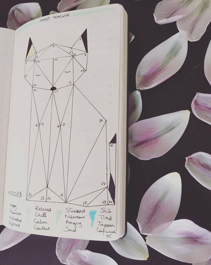 Flowhers Mood Tracker de mon bullet journal pour le mois de mai