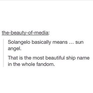 Sol = Sun = Will                                            Angelo = Angel = Angel of death = Nico                This is the perfect ship name for them