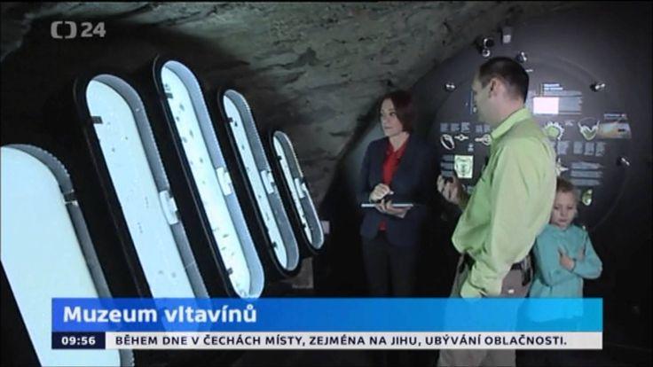 ČT 24 - studio 6 - Muzeum vltavínů