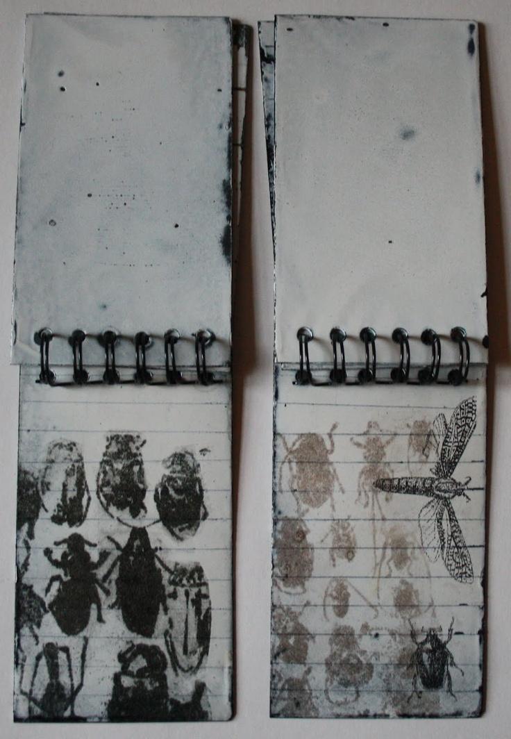 Sue Brown Printmaker: FIELD NOTES (metal): U K Printmaker Sue, Insect Drawing Sketchbooks, His Brown, Notes Metal, Brown Printmaker, Fields