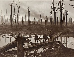 /Battle_of_Passchendaele Also known as third battle of Ypres Australian gunners on a duckboard track in Château Wood near Hooge, 29 October 1917. Photo by Frank Hurley