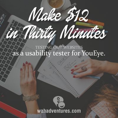 Study websites and earn $12 for just thirty minutes of your time.