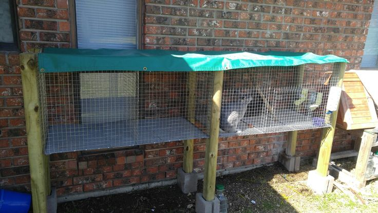 Diy rabbit cage. When finished with all posts you will have a complete hanging rabbit cage. Total for the project 50 ish bucks and 2 afternoons... 6$ for 3 8' posts, 20$ roll of wire(40$ totoal for 2 cages), 2 or 3$ for bag of wire clips. Wire shelf was found scrap and every thing else was lay n around house.