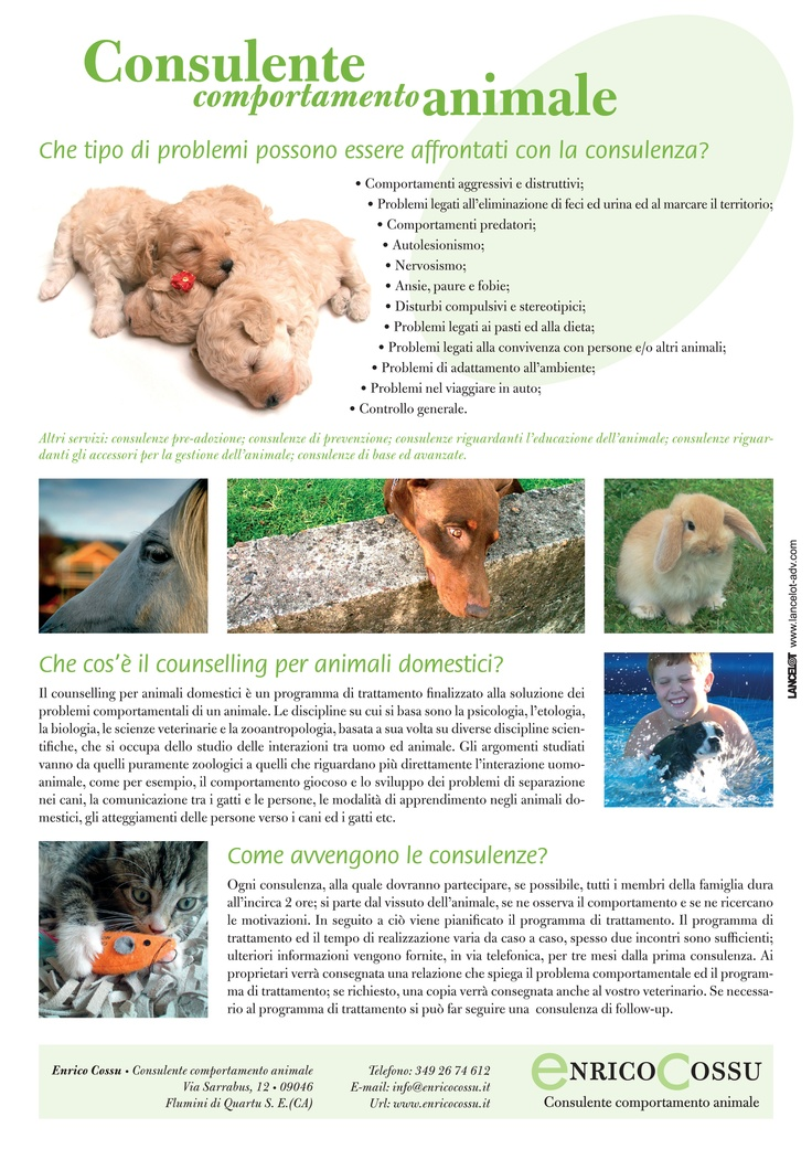 Flyer for pet behaviour counselling