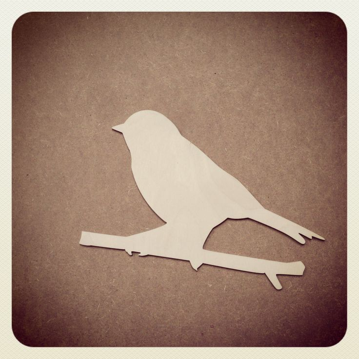 A lovely bird on a twig. I really like this custom cut shape we just made for a customer. Steve :-)