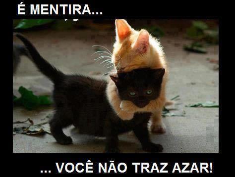 Gato preto não traz azar.!...