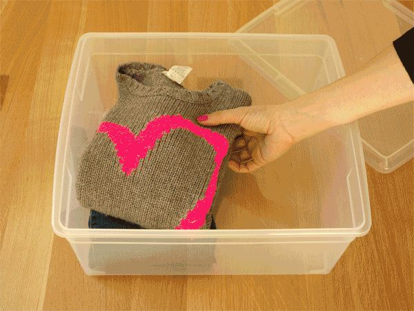 Moving Day Advice: Make an Essentials Box for Kids and Pets | Made + Remade