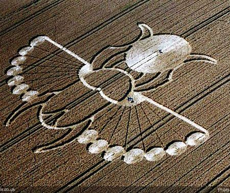 egyptian scarab crop circle 2005 lucy pringle crop circle in east ...