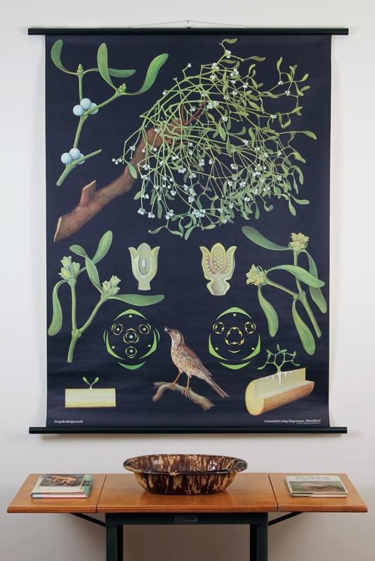 Vintage Pull Down Mistletoe Science Poster... Rad.