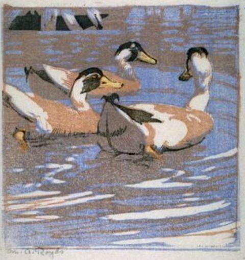Mabel Royds, Ducks