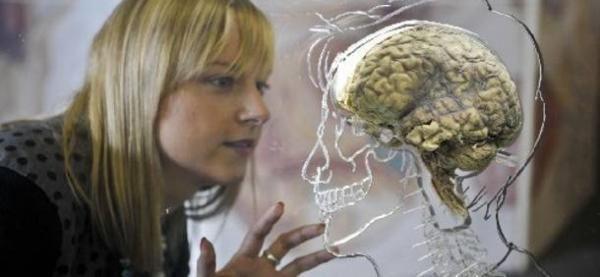 Η ασθένεια, είναι η τέλεια λύση που βρίσκει ο εγκέφαλος στο πρόβλημα των «εσωτερικών συγκρούσεων» Η νέα ιατρική του γιατρού Χάμερ Ο γιατρός Ρίκε Γκέερτ Χάμερ (Ryke Geerd Hamer) υπήρξε για πολλά χρό...