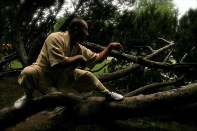 Shifu Shi De Cheng, 31st generation Shaolin Martial Monk
