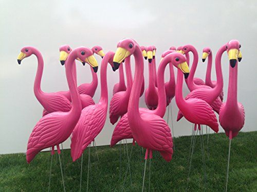 50 Premium Pink Flamingo Lawn Ornaments ** Check out the image by visiting the link.