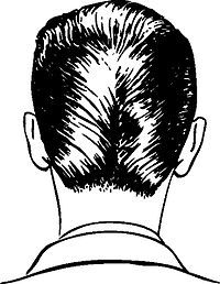 Duck's ass - Wikipedia, the free encyclopedia The duck's ass is a haircut style that was popular during the 1950s. It is also called the duck's tail, the ducktail, or simply D.A., and is also described as slicked back hair.