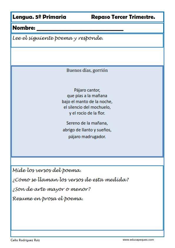 Ejercicios Lengua Quinto Primaria Primarias Tipos De Texto Ejercicios De Comprensión