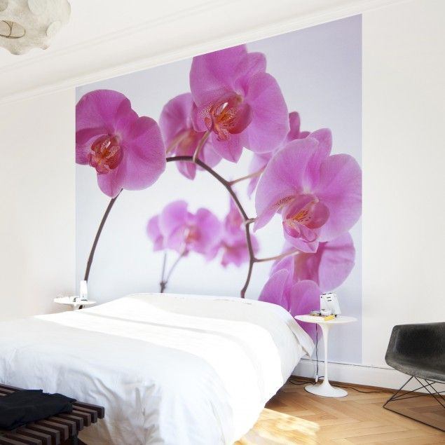 1000 images about blumenwunder flower power on. Black Bedroom Furniture Sets. Home Design Ideas