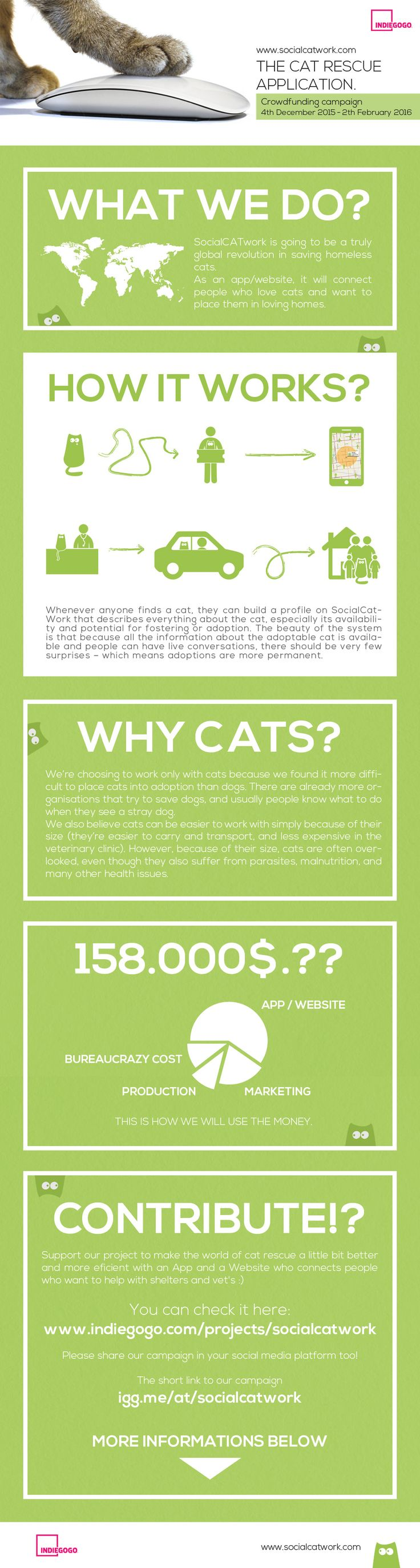 Ready to make an impact on cat rescue? Support our project to make the world of cat rescue a little bit better and more eficient with an App and a Website that connects people who want to help stray cats find a lovely home.  Please share our campaign in your social media platform too! #socialcatwork #crowdfunding