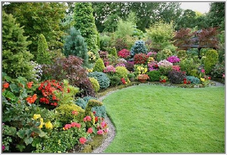 Low maintenance flowering shrubs attractive small yard for Front yard landscaping plants and shrubs