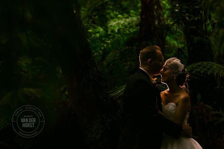 Lyrebird Falls Wedding-1039.jpg