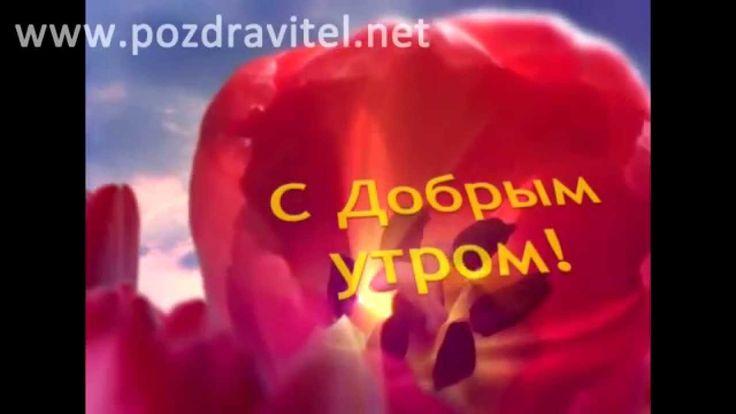 Красивая и живая видео открытка с пожеланием доброго утра финал!