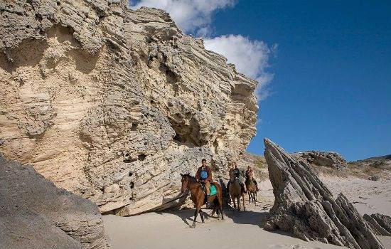 Smell the salty air and enjoy the spectacular scenery on horseback at Grootbos Nature Reserve #luxurycapetown