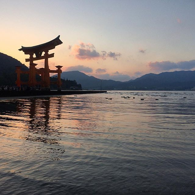 I had a very special time in Hiroshima, Miyajima is stunning ⛩ . . . #hiroshima #hiroshimamonamour #⛩ #miyajima #itsukushima #厳島神社 #unesco #大鳥居 #torii #bestviewofjapan #threeviewsofjapan #日本三景 #宮島 #japan #thisisjapan #japantrip #japantravelcom #japanigram #explorejapan