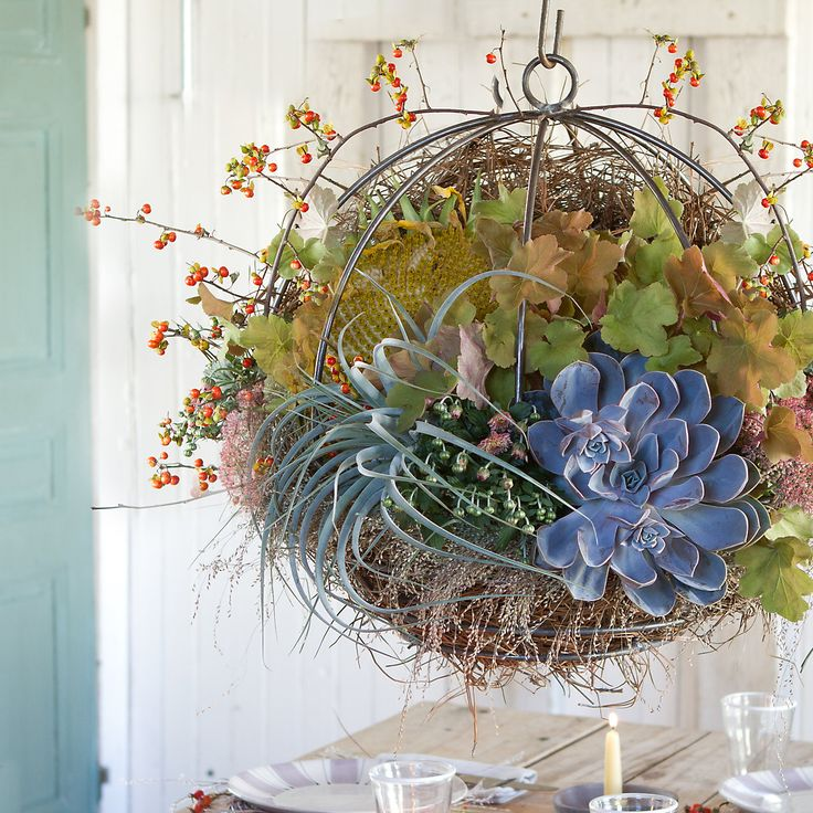 Sphere Hanging Basket in Gifts Perfect For... The Gardener at Terrain