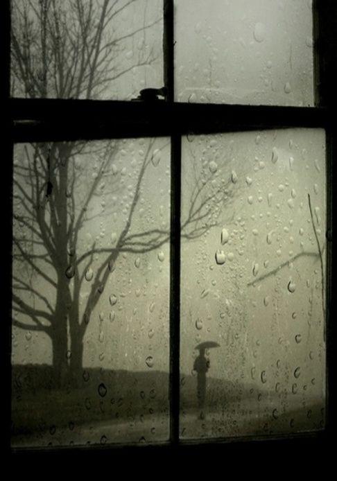 Rain On The Window  suena la lluvia en mi ventana suena dentro de mi corazón esa lluvia fría acompañada de las tormentas que estoy viviendo y de las que no se como escapar, día con día enfrían más mi corazón y las lagrimas abundan como esta fría lluvia