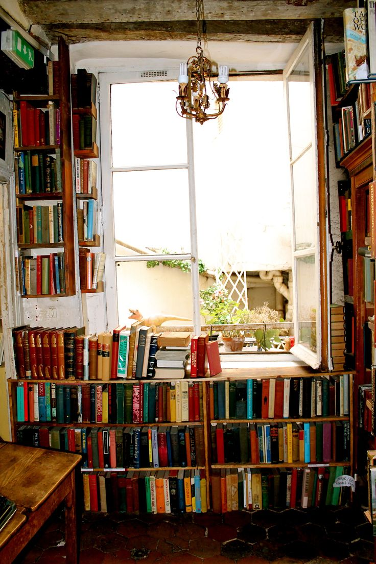 bookshelves built in around a window