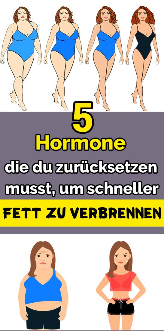 5 Hormone, die Sie zurücksetzen müssen, um schneller Fett zu verbrennen   – Gesundheit und Fitness