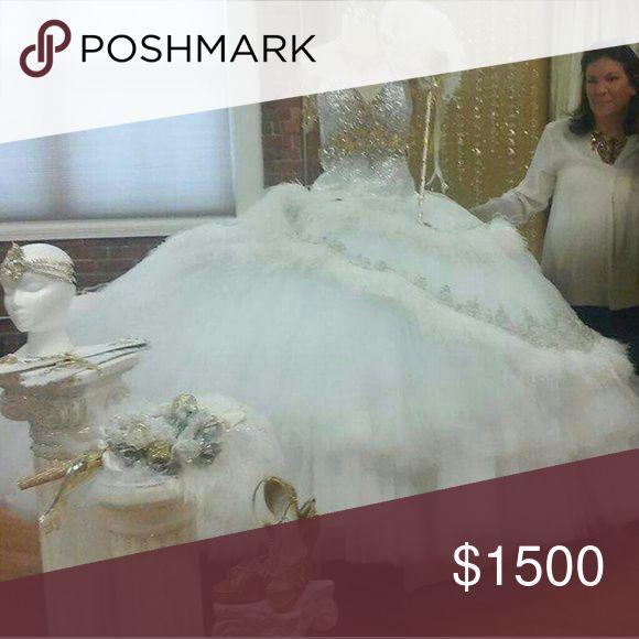 Sondra Celli wedding dress MBFAGW WEDDING DRESS WILL AIR 2017 BEAUTIFUL HANDMADE DRESS NICE CORSET TOP WITH OVER TEN THOUSAND RHINESTONES.... Sondra Celli Dresses Wedding