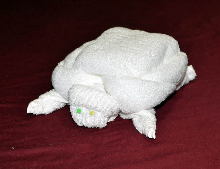 How to make a Towel Turtle: Towels Animal, Towels Crafts, Handdukar Towels, Towels Art, Origami Turtles, Hands Towels, Turtles Towels, How To Make A Towels Turtles, Australiadayonboard Turtles