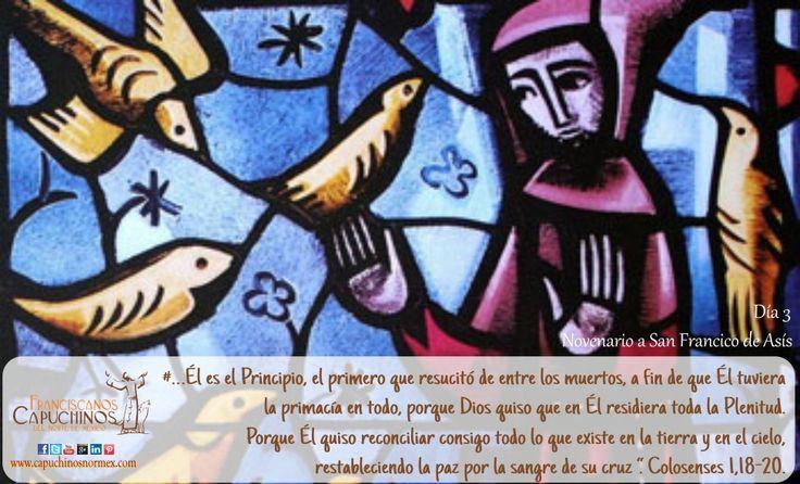 7 de Septiembre. Tercer día del novenario a san Francisco de Asís. Reza el novenario completo en: http://www.pazybien.es/novena-a-san-francisco-dia-3-reverencia-por-la-creacion/