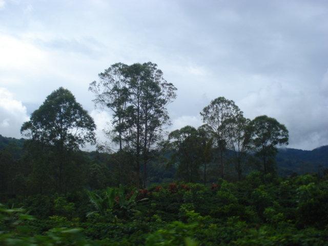 Viene la lluvia, carretera a Desamparados, San José de Costa Rica.