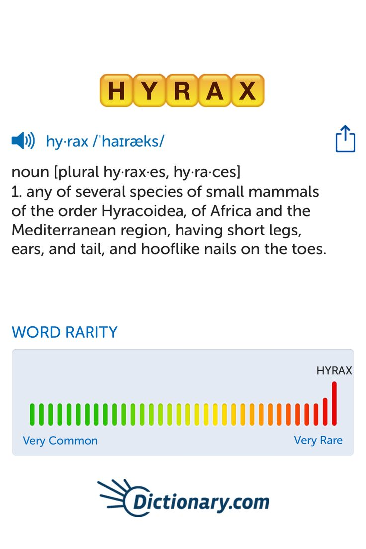 The best word I've seen today on Words with Friends is 'hyrax'. Can you come up with a better one?