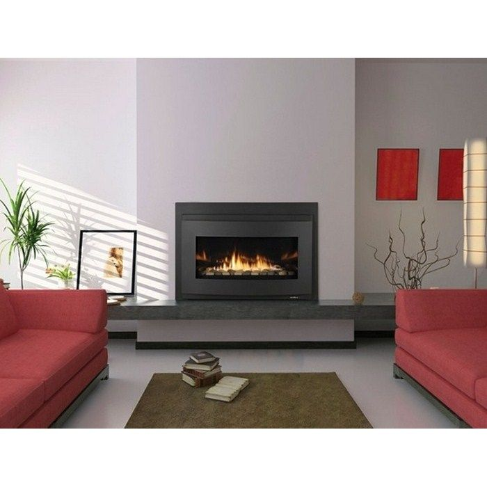 fireplace insert | California - buy fireplaces, inserts & stoves online at The Fireplace ...