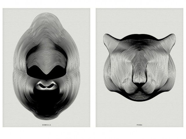Drawing Animals using Moirée Patterns – Fubiz™