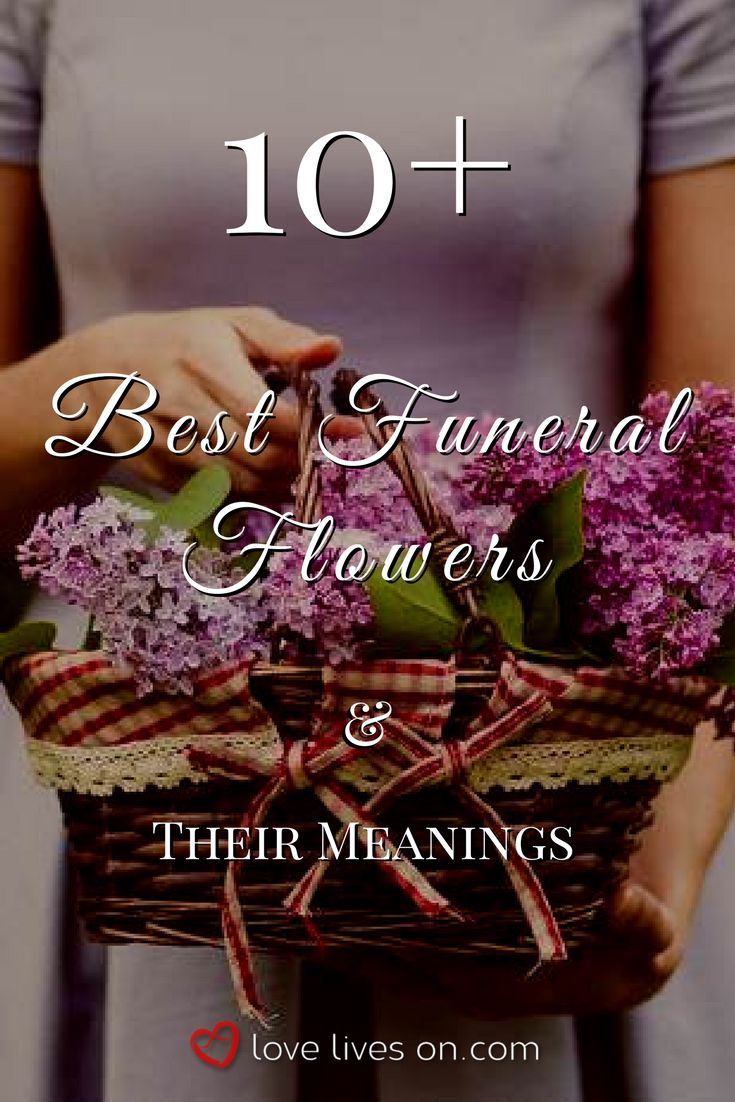 94 best funeral flower meanings images on pinterest 10 best funeral flowers izmirmasajfo Images