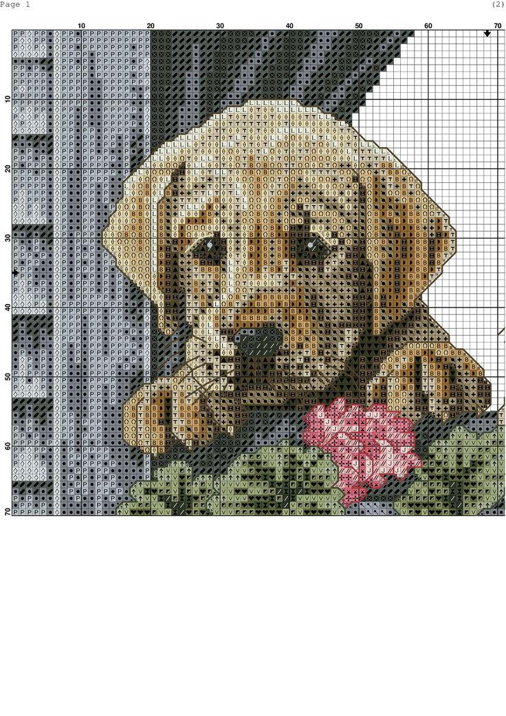 Картинки схемы вышивок с собаками